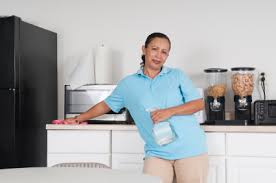 Housekeeper Services Housekeeping Services In Greater Detroit Michigan Stathakis