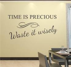 Vinyl Wall Quotes Simple Time Is Precious Use It Wisely Decor Vinyl Wall Decal Quote Sticker