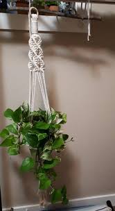 macrame plant holders wall hanging