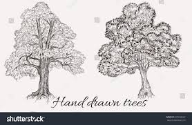 Set Vector Collection Two Hand Drawn Stock Vector 370938587 ...