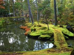Image result for moss gardens