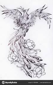феникс черно белый рисунок эскиз феникса черно белый эскиз