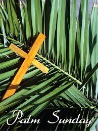 "Sermon Redux - ""Palms, Coats and Rocks"" - Palm Sunday Sermon - Luke 19: 28-48"