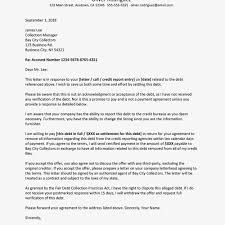 Credit Note Letter Format In Word New Promissory Note Template Word