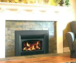 gas fireplace inserts consumer reports elleinadspir com