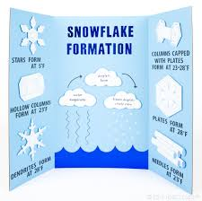 How To Make A Chart For A Science Fair Project If Youre Looking For A Science Fair Project This Snowflake