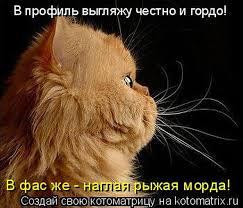 Клюев: Я невиновен и опровергаю все обвинения - Цензор.НЕТ 4127