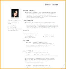 Effective Resume Examples Magnificent Effective Resume Examples Cool Successful Resume Format Sample