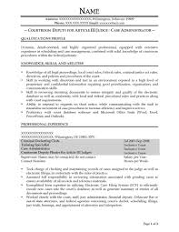 Example Federal Resume Federal Resume Example Fair Free Federal Resume Sample From Resume 24