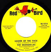 Image result for Leader of the Pack  images