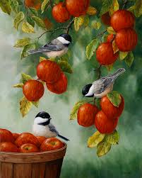 birds painting bird painting apple harvest adees by crista forest