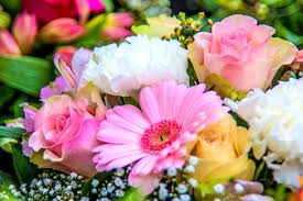 Month Flowers Chart Birth Month Flowers And Meanings Whats Your Birth Flower