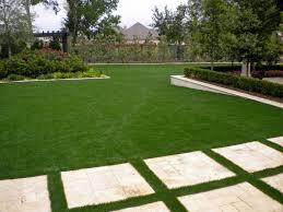 трава для ландшафта оптом