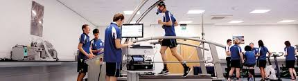 Careers With Exercise Science Degree About Sport Exercise Science Bases