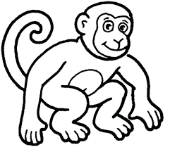 Zoo Animal Coloring Pages Amazing Free Baby Jungle Printable For