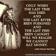 Indian Quotes Awesome Funny American Indian Quotes On QuotesTopics