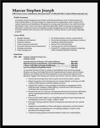 Perfect Resume Professional Summary Examples Resume Template For