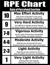 Personal Training Chart Personal Trainer Forms Cpt Forms Charts Consultation