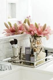 Decorative Bathroom Tray Vanity Trays For Bathroom Bathroom Windigoturbines cosmetic trays 17