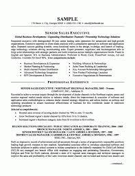 Executive Resume Samples Uxhandy Com
