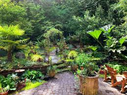 design and landscape my backyard
