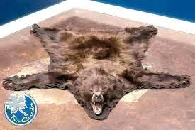 bear rug for bear head rug bear head rug grizzly bear rug with head black