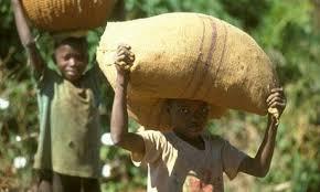 Resultado de imagen de nestle y los niños explotados del cacao