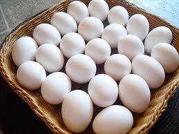 Resultado de imagen para imagenes de huevos