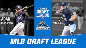 MLB Draft League Rosters ...
