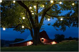 outdoor tree lighting ideas. Tree Lights Outdoor Solar » Get Living Room Best Lighting Ideas Pinterest