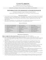 Resume Project Manager Example Resume Templates Information Technology Senior Project Manager 18