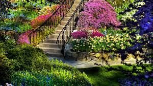 flowers garden. Beautiful Flower Garden Simple Landscaping Ideas Also Flowers House Trends Mixture Colorful Pinkish Violet Color