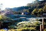 imagem de Águas Mornas Santa Catarina n-4