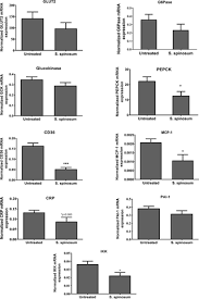 Sarcopoterium spinosum extract improved insulin sensitivity in mice ...