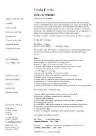 Consultant Cv Sales Consultant Cv Template Dayjob