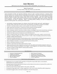 50 Best Of Resume Format For Banking Professional Resume Writing