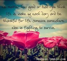 Life Beautiful Quote Best of Beautiful Life Quotes Tumblr Life Beautiful Tumblr Quotes Quote On