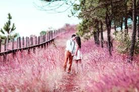 Resultado de imagen para Un nuevo camino se abre ante tus ojos y ahora debes elegir. Puedes mejorar tu vida amorosa.