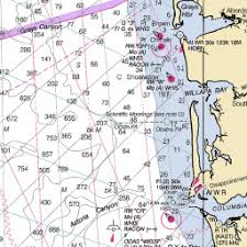 Quemahoning Reservoir Depth Chart Quemahoning Reservoir Fishing Reports And Maps