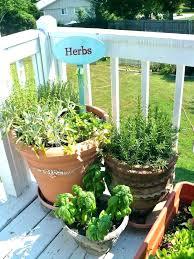 herb garden starter kit outdoor herb garden outdoor garden herb planters container garden herb garden pots outdoors herb garden outdoor planting herb garden