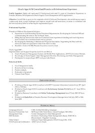 hr functional consultant resume Domov