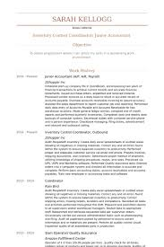 Example Of Accounting Resume Beauteous Junior Accountant Resume Samples VisualCV Resume Samples Database