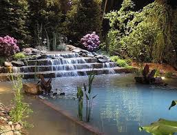 Best Waterfalls Into Pools Images On Pinterest Landscaping