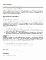 Visual Merchandiser Resume Elegant 29 Beautiful Retail Sales