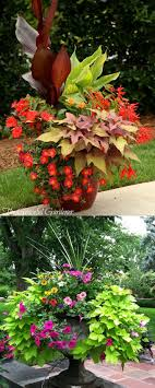 Small Picture Best 25 Outdoor planters ideas on Pinterest Potted plants