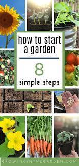 start a garden in 8 simple steps
