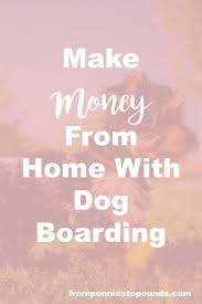 ideas about pet sitting pet sitting business love animals here s a money making idea for you