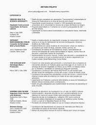 resume with profile statement profile statement for resume lovely famous resume profile statement
