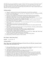 Telecom Analyst Resume 65 Images Telecom Analyst Resume Samples