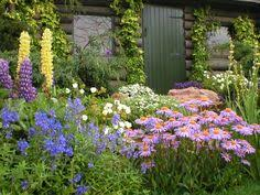 Small Picture English Gardens Saferbrowser Yahoo Image Search Results
